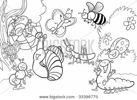 Cartoon Insects On The Meadow For Coloring