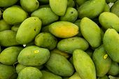 Texture Of Green Juicy Fresh Mango Fruit. Group Of Fresh Green Mango For Sell .thai Fruit Tropical R poster