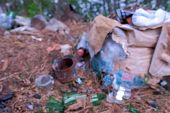 Waste, Trash And Garbage In Forest, Blurred Nature Background, Enviromental Pollution Concept. Ecolo poster