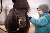 A Little Boy In Turquoise Overalls Stroking An Icelandic Pony Horse With A Funny Forelock. The Kid T poster