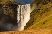Skogafoss Waterfall And Rainbow At Sunny Autumn Day, Iceland. Great Tourist Attraction, poster