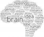 image of neurotransmitter  - brain word cloud with grey words on a white background - JPG
