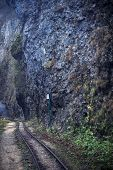 The Old Railway In The Mountain Gorge, The Guam Gorge Of Adygea, The Caucasus poster