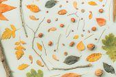 Fall Season Flat Lay Decoration Background, Top View Vibrant Pattern Arrangement poster