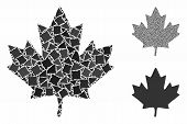 Maple Leaf Composition Of Abrupt Pieces In Different Sizes And Color Hues, Based On Maple Leaf Icon. poster