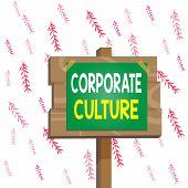 Handwriting Text Writing Corporate Culture. Concept Meaning Pervasive Values And Attitudes That Char poster