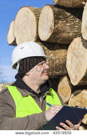 Lumberjack  writing near at the log pile