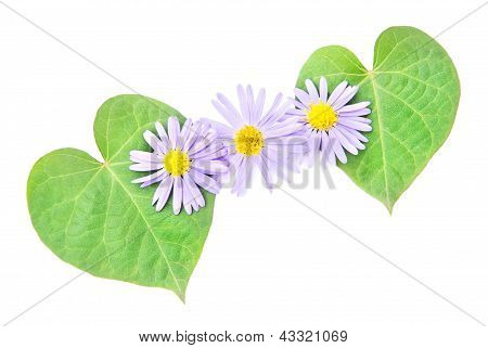 Love Concept: Pair Of Hearts From Leaves And Flower For Happy Va