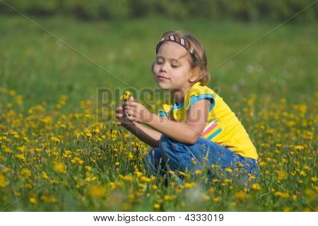 Cute Little Girl On A Meadow