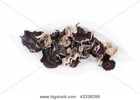 Jew's Ear On Plate, Top View.