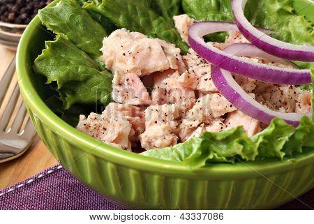 Salada de atum com alface, cebola roxa e pimenta moída.  (vidro moinho de pimenta visível no fundo).
