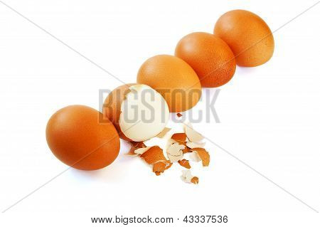 Group Of Eggs Isolated