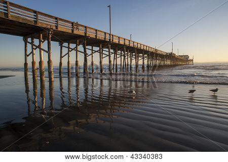 newport beach pier reflection