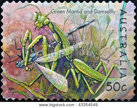 stamp printed in Australia shows green mantid and damselfly