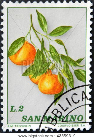 A stamp printed in San Marino shows branch with oranges