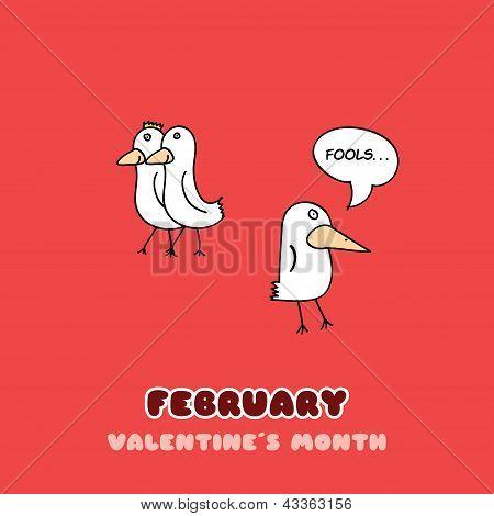 February Bird Adventure