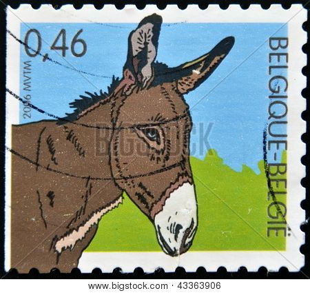 A stamp printed in Belgium shows a donkey
