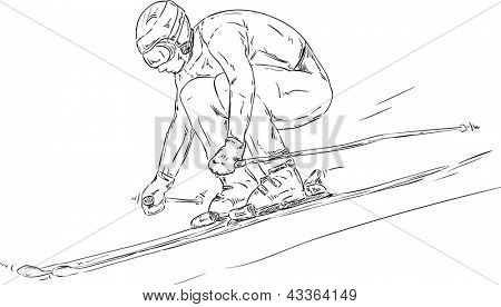 vector - skiing downhill race - isolated on background
