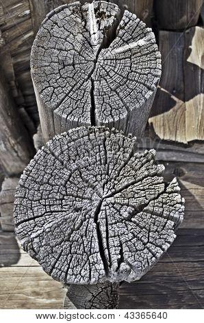 Butt Logs Of Old Barn