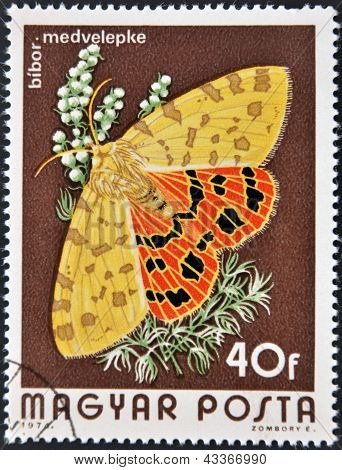 stamp printed in Hungary a shows image of a Checked butterfly