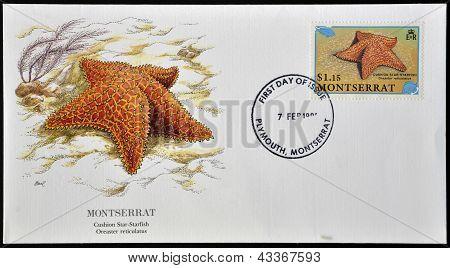 Una postal impreso en Monserrat espectáculos cojín starfish estrella oreaster reticulatus