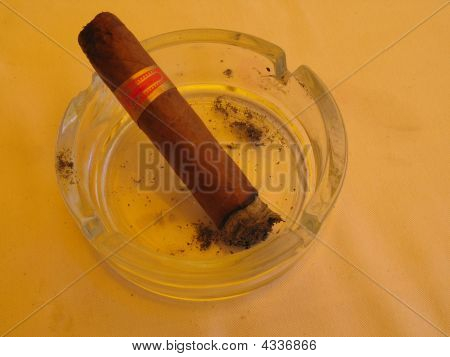Large Cuban Cigar With Ash In Ashtray