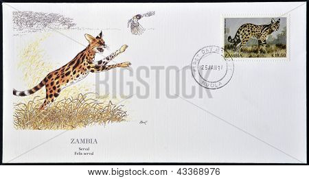 A postcard printed in Zambia shows a serval felis serval