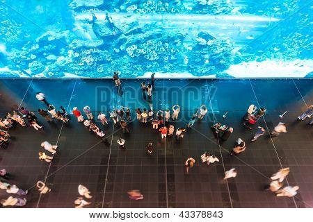 People watching huge aquarium in oceanarium.