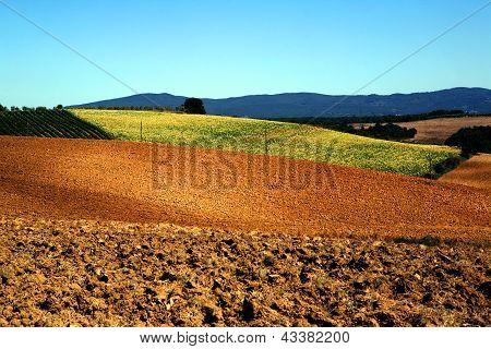 Italian countryside