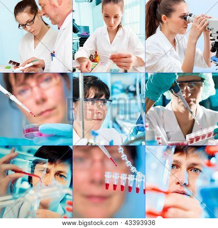 Collage of people clinicians studying microbiology genetics in laboratory