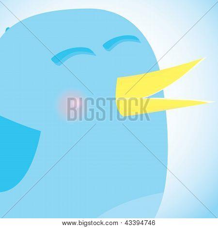 Social network blue bird, media concept