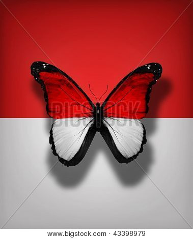 Monaco Flag Butterfly, Isolated On Flag Background