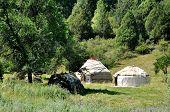 image of yurt  - yurt is the housing of the nomads - JPG