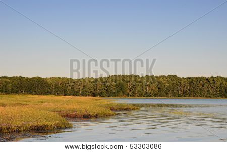 Marsh At Casco Bay