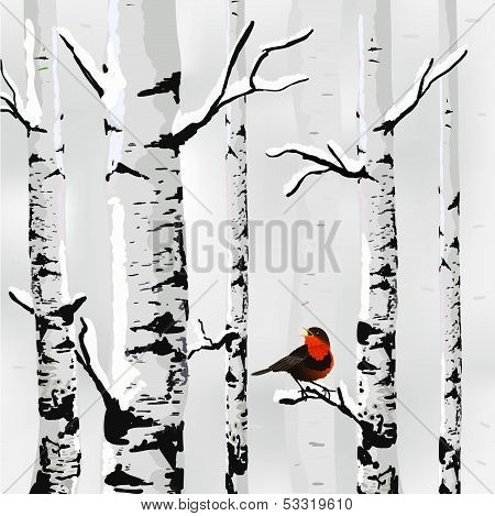 Winter card in vector
