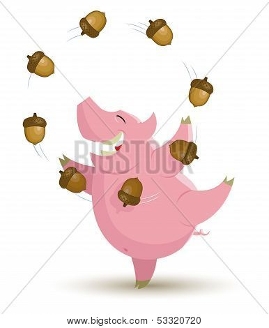 Pig Is Juggling With Acorn