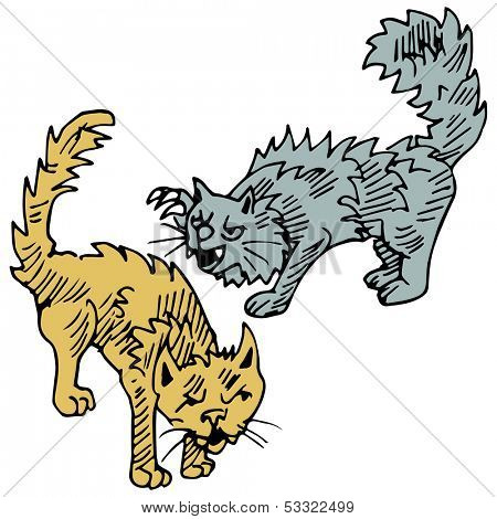 An image of cats fighting.