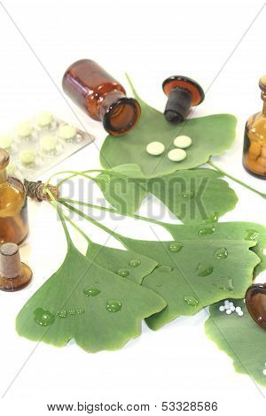 Ginkgo Leaves With Globules And Tablets