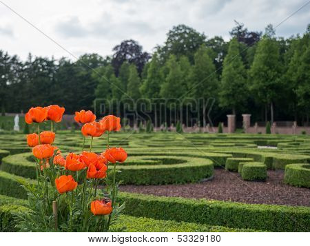 Gardens At Het Loo Palace, Netherlands