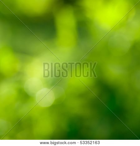 abstract green background with natural bokeh