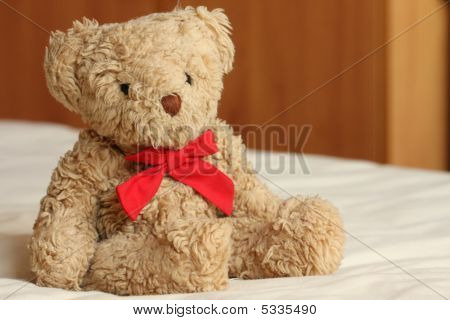 Bear On The Bed