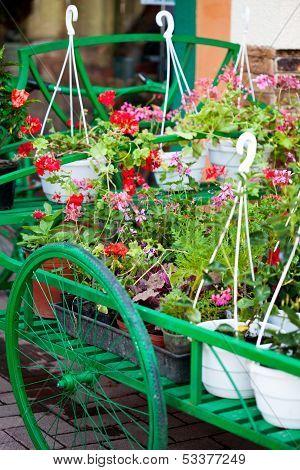 Flower's Market Outdoor