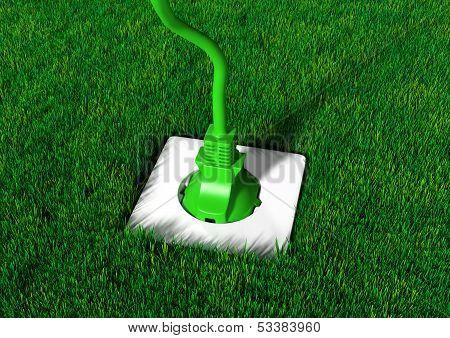Plug Into A Grassy Ground
