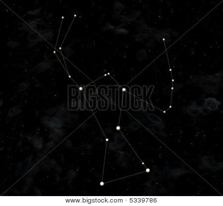 Constellation Is Orion