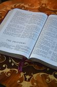 stock photo of leather-bound  - Red Leather bound Holy Bible on italian walnut desk. ** Note: Slight blurriness, best at smaller sizes - JPG