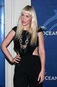 LOS ANGELES - OCT 30:  Natasha Bedingfield at the Oceana's Partners Awards Gala 2013 at Beverly Wils