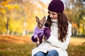 foto of miniature pinscher  - Cute woman with her Miniature Pinscher in autumn forest - JPG
