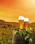 picture of keg  - Beer keg with glasses of beer on rural countryside background - JPG