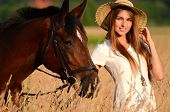 stock photo of horse girl  - The woman on a horse in field - JPG