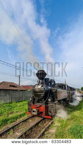 Mocanita train in Vaser Valley, Maramures